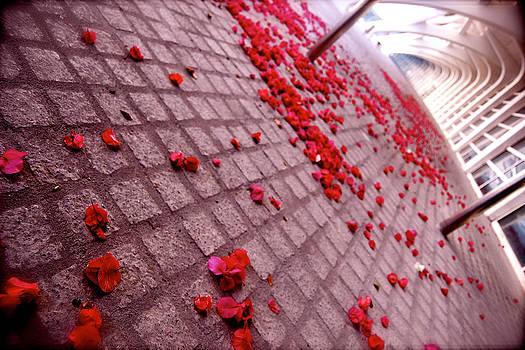 HweeYen Ong - Red Drops