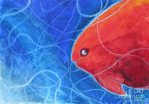 Red Fish by Samantha Geernaert