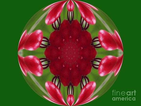 Red Flower Orb by Annette Allman