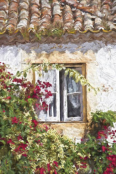 David Letts - Red Flower Window