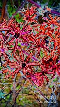 Red Flowers by Karen Newell