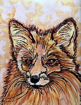 Red Fox by Connie Valasco