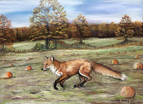 Red Fox in Pumpkin Patch by Charlotte Yealey