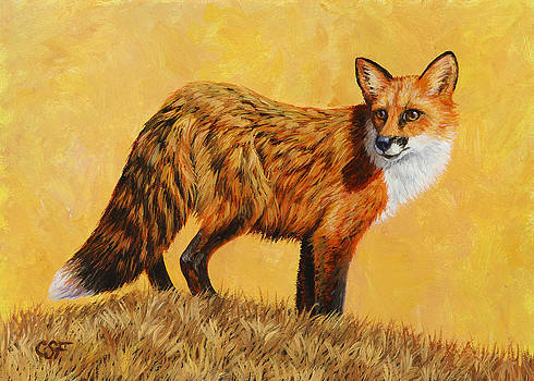 Crista Forest - Red Fox Painting - Looking Back