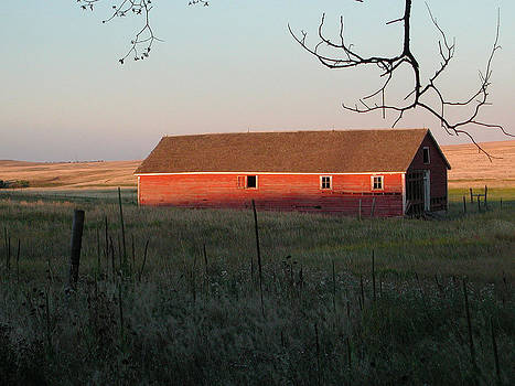 Red Granary Barn by Susie Rieple