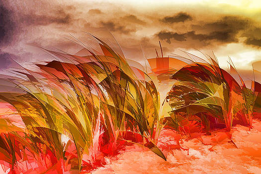 Red Grass by Mary Underwood