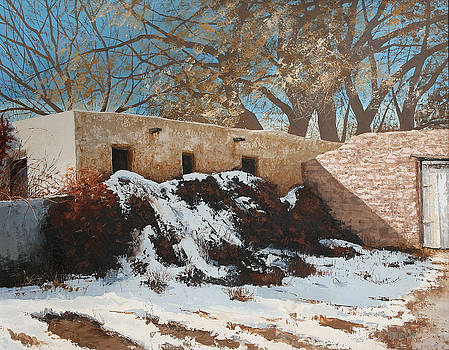 Red Hedged Adobe in Snow by Patricia Rose