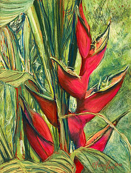 Red Heliconia by Kitty Harvill