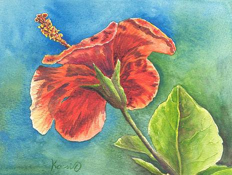 Red Hibiscus by Oty Kocsis