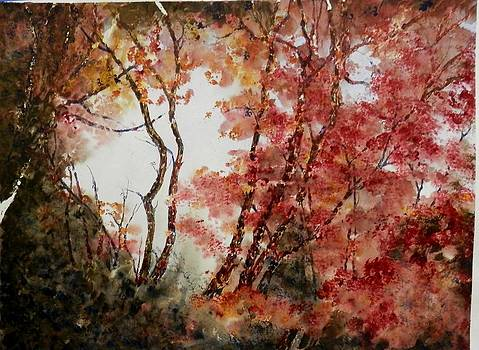 Red Hollow by MArilyn McMeen Brown