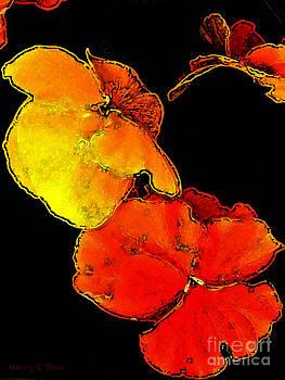 Nancy Stein - Red Hot Flower Pop