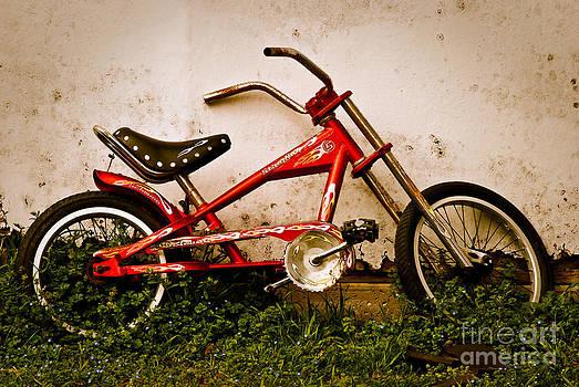 Sonja Quintero - Red Hot Stingray Bike