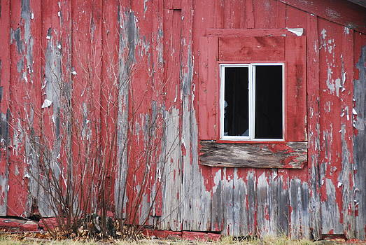 Red House by Thea Wolff