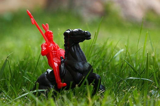 Red Indian on a Black Horse in the Green Grass by Lon Casler Bixby