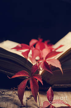 Red ivy in the book by Jelena Jovanovic