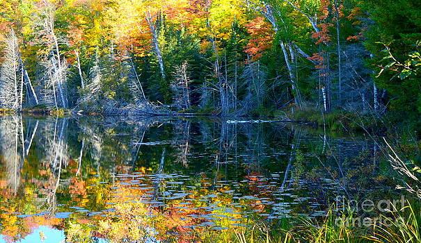 Red Jack Lake by Jaunine Roberts
