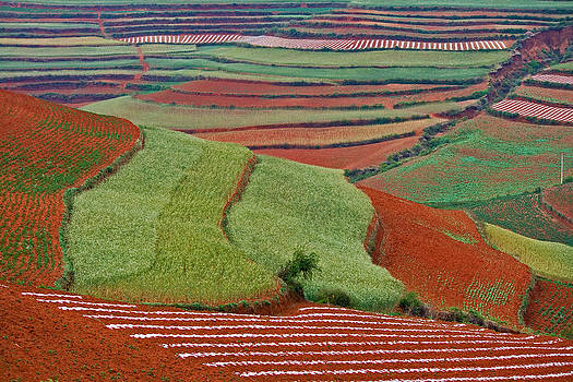 Red Land 06 by Jason KS Leung