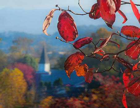 Red Leaves Blue Mountain by Dorothy Walker