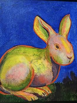 Red-Line Rabbit by Barbara  Rhodes