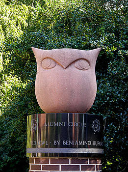 Richard Reeve - Red Owl at Temple