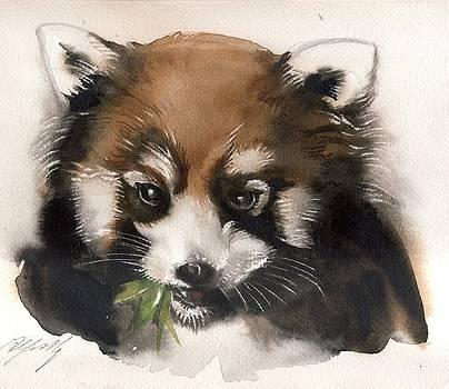 Alfred Ng - Red panda
