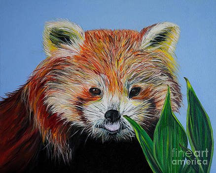 Red Panda by Silvana Abel