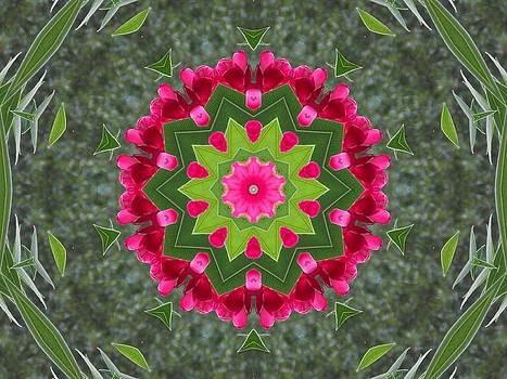 Red Pink Flora by Annette Allman