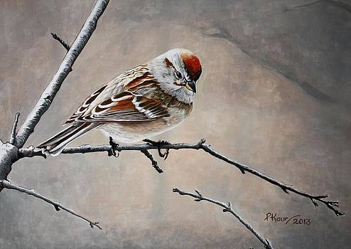 Red Poll by Pam Kaur