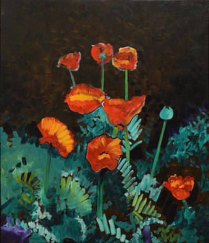 Red Poppies by Anguspaul Reynolds