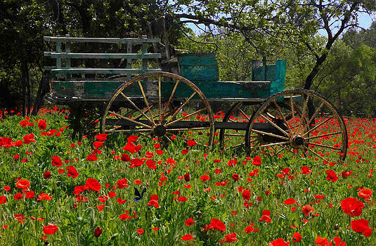 Susan Rovira - Red Poppies with Wagon