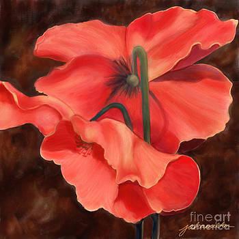 Red Poppy Three by Joan A Hamilton