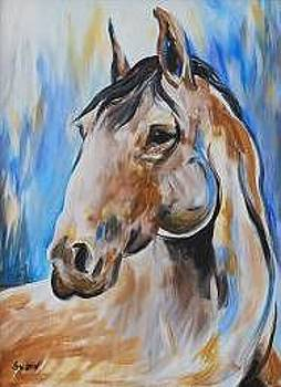 Red Roan Mustang Abstract by Veronica Silliman