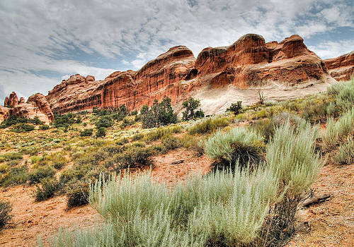 Red Rock and Sage. Arches National Park Utah. by Rob Huntley
