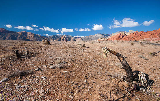 Red Rock Canyon by Andrew Barker
