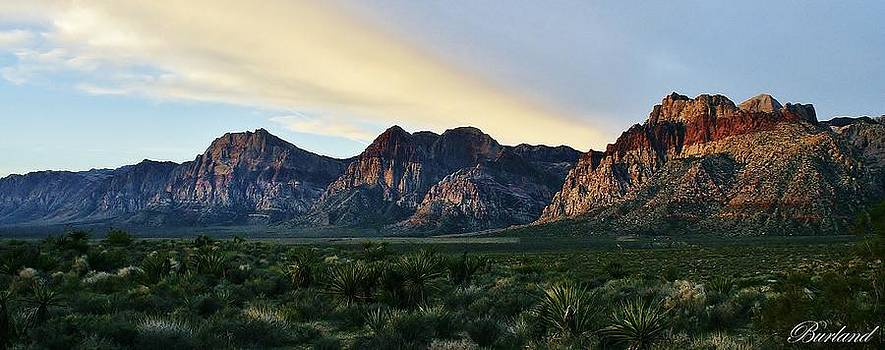 Red Rock Canyon by Burland McCormick