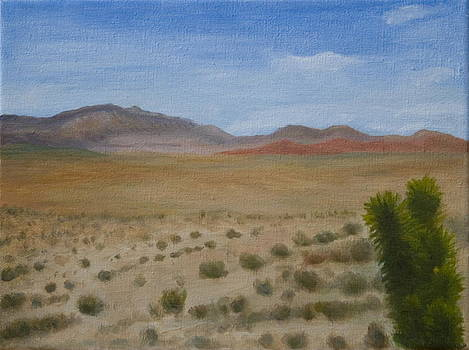 Red Rock Canyon by Stephen Degan