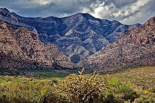 Red Rocks Canyon by Joe Urbz