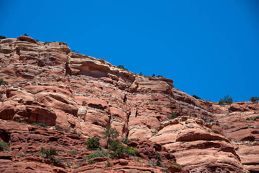 Red Rocks by Nickaleen Neff