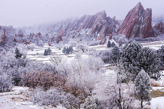 Red Rocks on Ice by Tony Lazzari