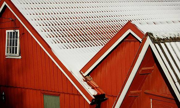 Red Rooftops In The Snow by Sonya Kanelstrand