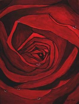 Red Rose  by Kat Poon