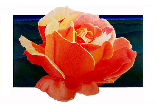 Red Rose by Kenneth Stockton