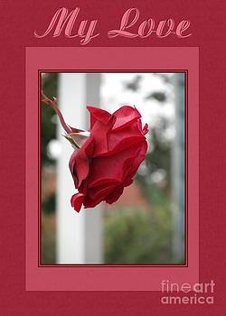 JH Designs - Red Rose My Love