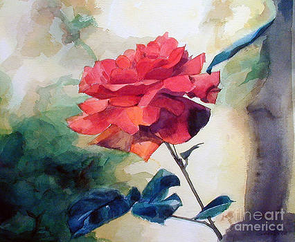 Watercolor of a single Red Rose on a Branch by Greta Corens