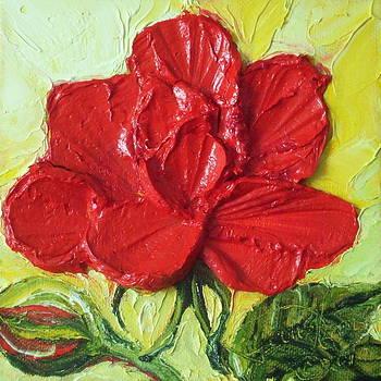 Red Rose by Paris Wyatt Llanso