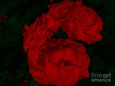 Red Roses Red Roses by Charleen Treasures