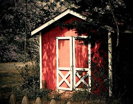 Red Shed by Lisa Merman Bender