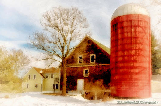 Red Silo by Tricia Marchlik