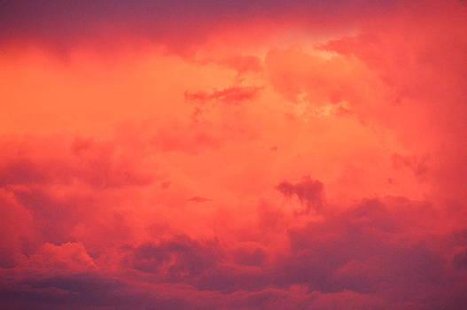 Red skies by Duane King