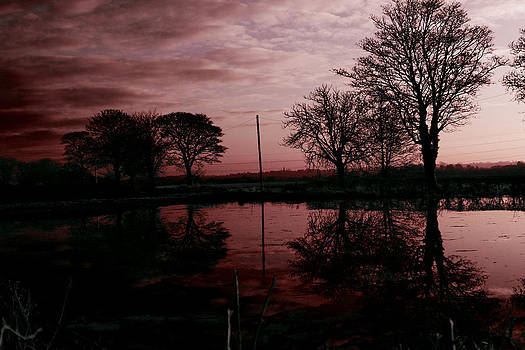 Red Sky at Night by Anthony Bean